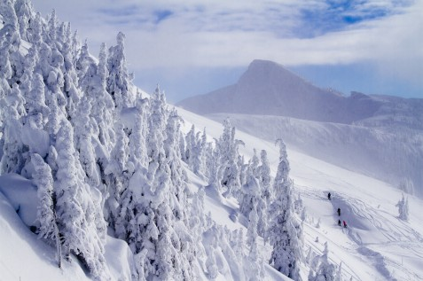 Stoke chair Revelstoke