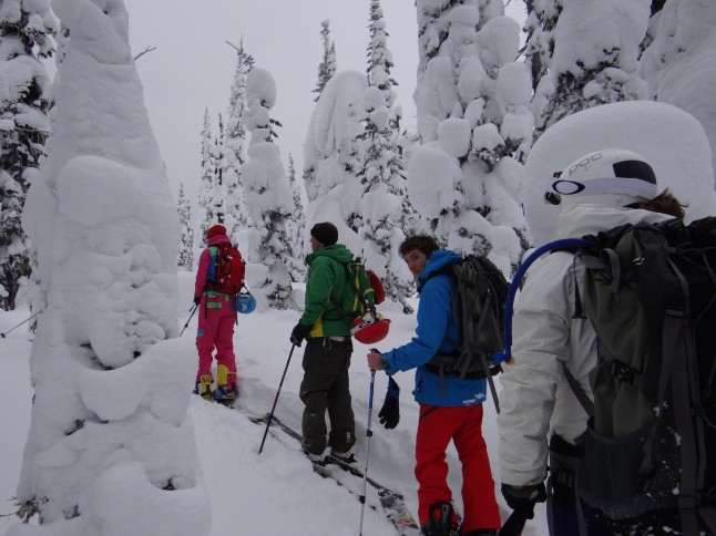 Back Country touring in Fernie