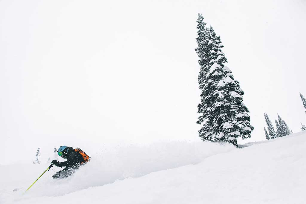 Real Snow Began After Dark >> Two Weeks Through Fernie Red Mountain Revelstoke And Kicking Horse
